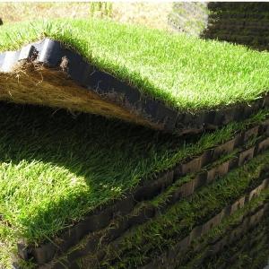 Grassbox