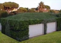 Cubierta vegetal Topgrass