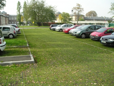 Parking Grassbox