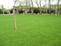Parque Topgrass